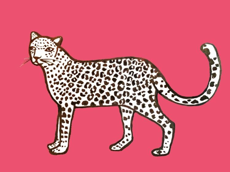 leopard_pinkkkgrd copy